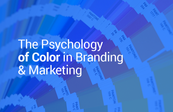 The Psychology of Color in Branding & Marketing